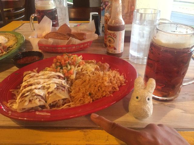 Cantrina Chicken Enchilada